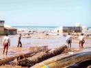 Zerstörung durch den Tsunami